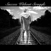 Success Without Struggle de David Edwards