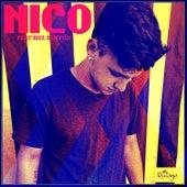 Nico de Nico