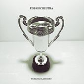 Working Class Hero by USB Orchestra