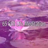 65 Still Life Meditation von Entspannungsmusik