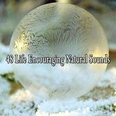 48 Life Encouraging Natural Sounds von Lullabies for Deep Meditation
