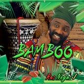 Bamboo by Ras Negus I