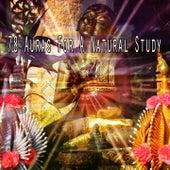 78 Auras for a Natural Study von Entspannungsmusik