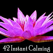 42 Instant Calming by Yoga Workout Music (1)