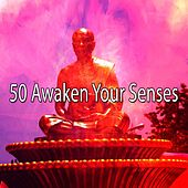 50 Awaken Your Senses von Massage Therapy Music