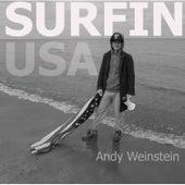 Surfin USA by Andy Weinstein