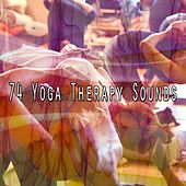 74 Yoga Therapy Sounds de Zen Meditation and Natural White Noise and New Age Deep Massage