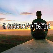 43 Ambience for the Mind von Massage Therapy Music