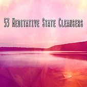 53 Meditative State Cleansers von Massage Therapy Music