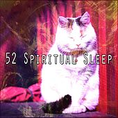 52 Spiritual Sleep de White Noise Babies