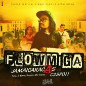 Jamaicaracas C2 Sp 011 by Flowmiga