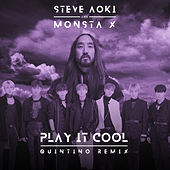 Play It Cool (Quintino Remix) von Steve Aoki