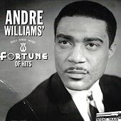 Fortune of Hits (1955-1960) von Andre Williams