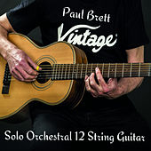 Solo Orchestral 12 String Guitar by Paul Brett