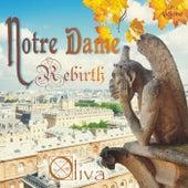 Notre Dame Rebirth de Oliva