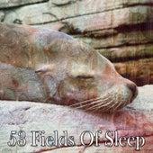 53 Fields of Sleep de Water Sound Natural White Noise