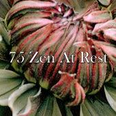 75 Zen at Rest de Sounds Of Nature