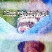 62 Sleep Welcoming Sounds de Smart Baby Lullaby