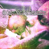 68 Calm Natural Relaxation by Lullaby Land