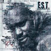 E.S.T. (Experience Stories & Truths) von Blaq Poet