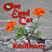 Resiliency by One Eyed Cat