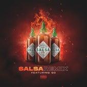 Salsa (Remix) by Niña Dioz