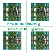 Welcome to My World by Dropkick Bunny
