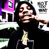 Not Too Many by Flipp Dinero
