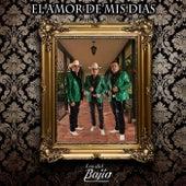 El Amor de Mis Dias by Los del Bajío