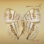 White Moth von Xavier Rudd