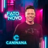Fato Novo de Caninana