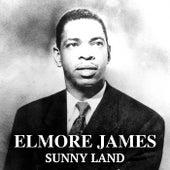 Sunny Land von Elmore James