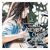Blue Lonesome Wind (Live) by Liz Meyer