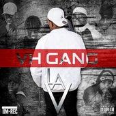 La V von Vh Gang