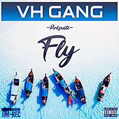 Fly (feat. Ismo) de Vh Gang