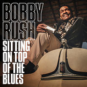 Recipe for Love by Bobby Rush