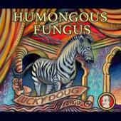 Humongous Fungus by Lucky Doug Fergus