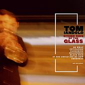 Other Side of the Glass by Tom Iandolo