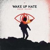 Deep Sleep by Wake Up Hate