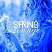 Spring Lounge, Vol. 3 - EP by Various Artists