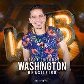 Foi Bom Reencontrar Você von Washington Brasileiro