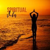 Spiritual Vibes – Meditation Music Zone, Yoga Music for Deep Harmony, Healing Meditation, Zen Chill Yoga, Mindfulness Relaxation by Meditation Music Zone
