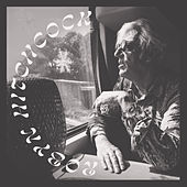 Sunday Never Comes by Robyn Hitchcock