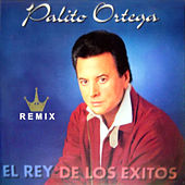 El Rey de los Éxitos (Remix) von Palito Ortega