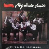 Jeito de Seduzir by Negritude Júnior