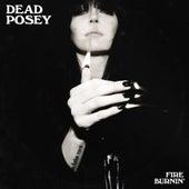 Fire Burnin' by Dead Posey