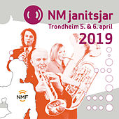 NM Janitsjar 2019 - 1 divisjon von Various Artists