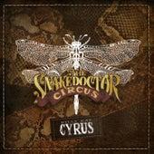 Guns, Gold & Guitars de Billy Ray Cyrus