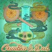Cumbia & Dub de Various Artists