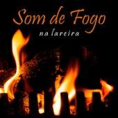 Som de Fogo Na Lareira de Sons da Natureza Projeto ECO Brasil